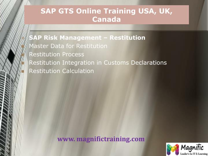 SAP GTS Online Training USA, UK, Canada