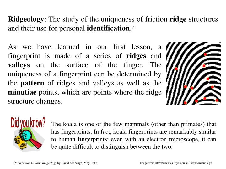 As we have learned in our first lesson, a fingerprint is made of a series of