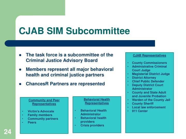 CJAB SIM Subcommittee