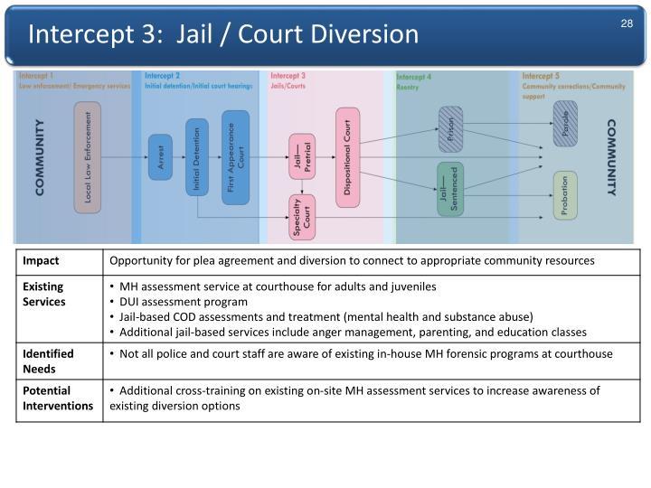 Intercept 3:  Jail / Court Diversion