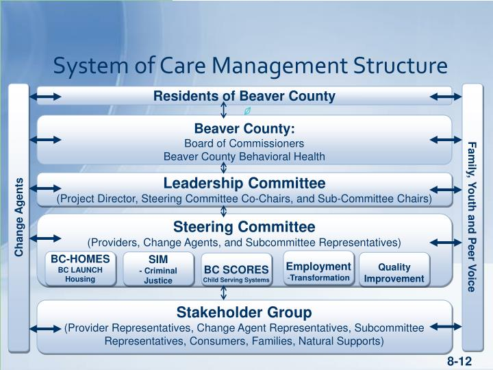 System of Care Management Structure