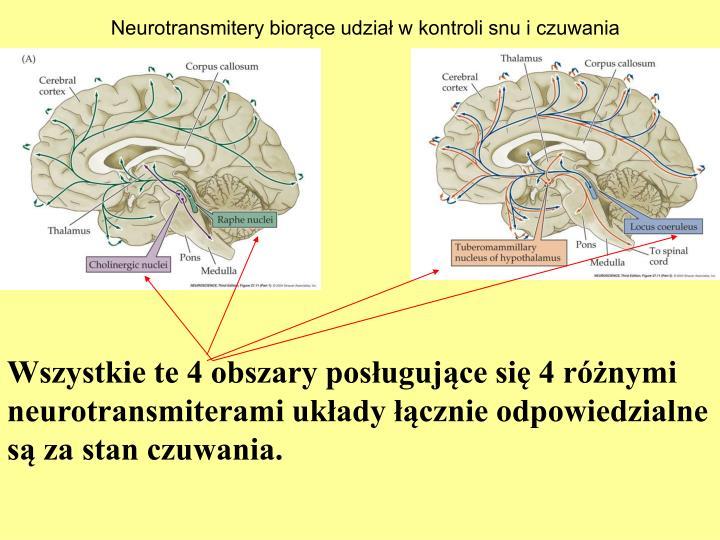 Neurotransmitery biorce udzia w kontroli snu i czuwania