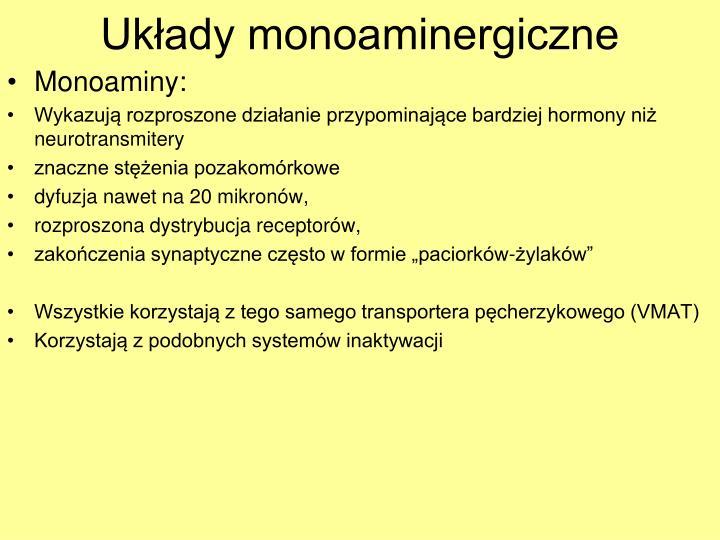 Ukady monoaminergiczne