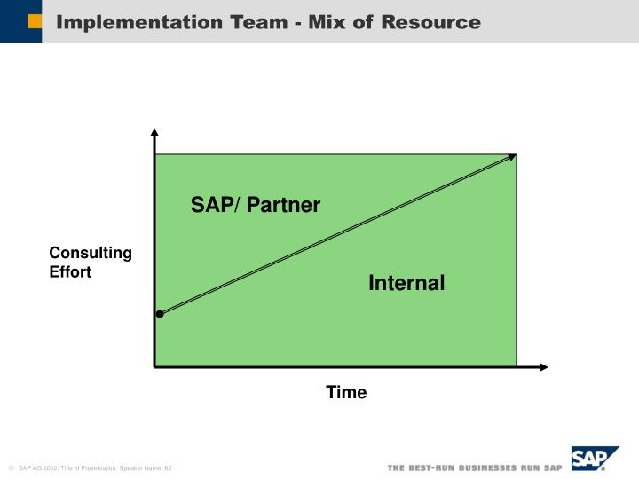 Implementation Team - Mix of Resource