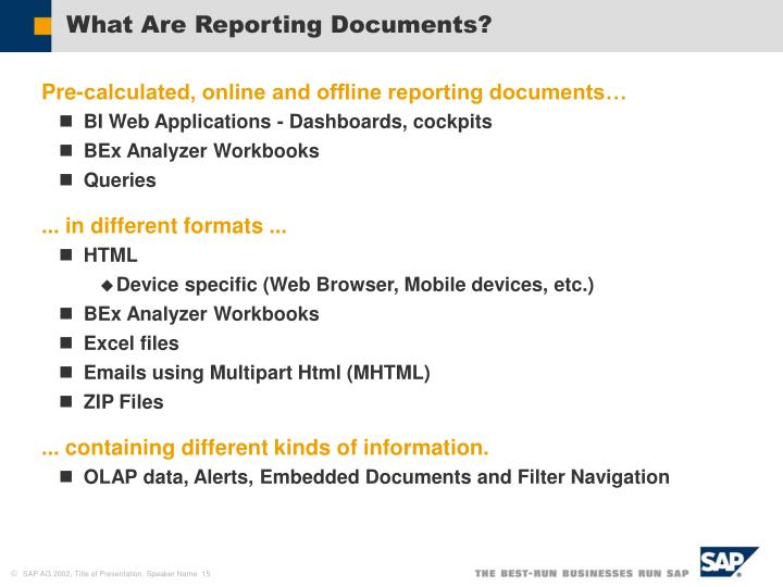 What Are Reporting Documents?