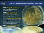 the euro and the economic and monetary union emu