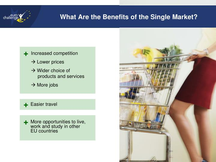 What Are the Benefits of the Single Market?