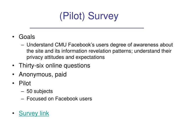 (Pilot) Survey