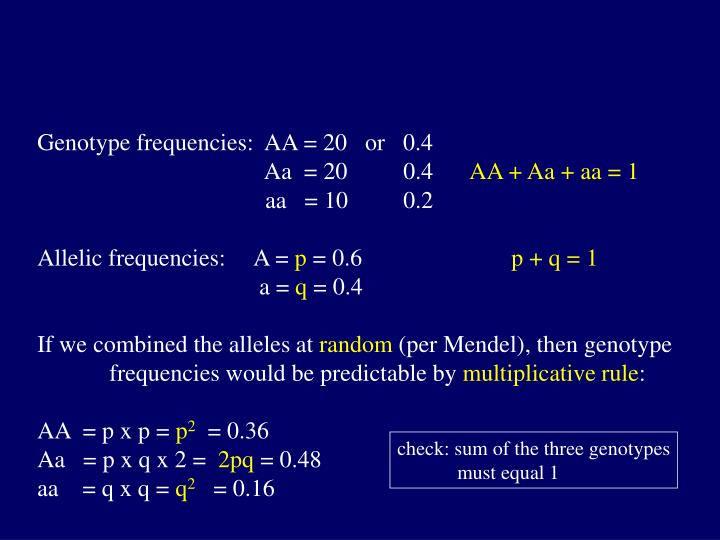 Genotype frequencies:  AA = 20   or   0.4
