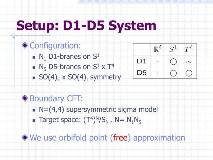 Setup: D1-D5 System