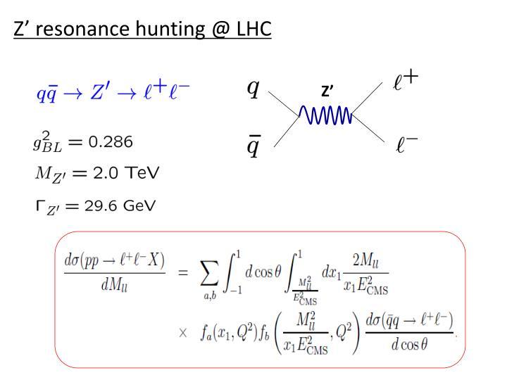 Z' resonance hunting @ LHC