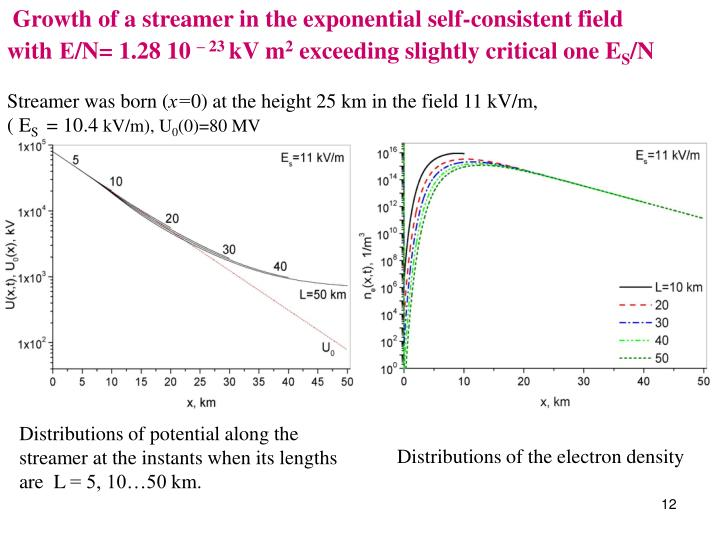 Growth of a streamer in the exponential self-consistent field