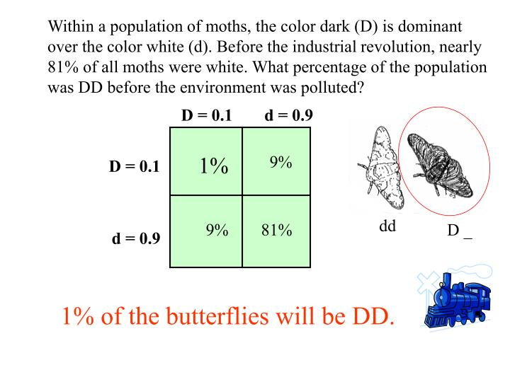 Within a population of moths, the color dark (D) is dominant over the color white (d). Before the industrial revolution, nearly 81% of all moths were white. What percentage of the population was DD before the environment was polluted?