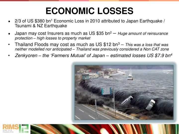 ECONOMIC LOSSES
