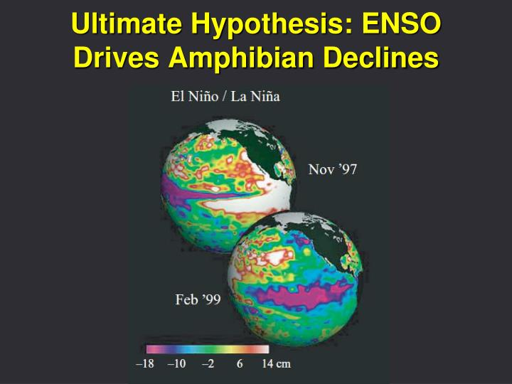 Ultimate Hypothesis: ENSO Drives Amphibian Declines