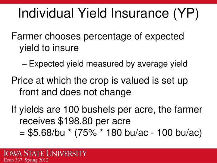 Individual Yield Insurance (YP)