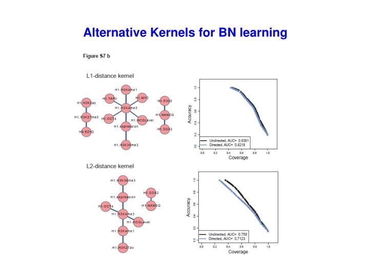Alternative Kernels for BN learning