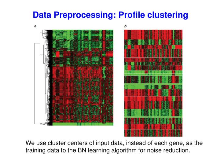 Data Preprocessing: Profile clustering