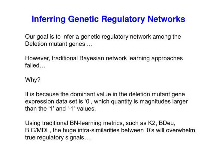 Inferring Genetic Regulatory Networks