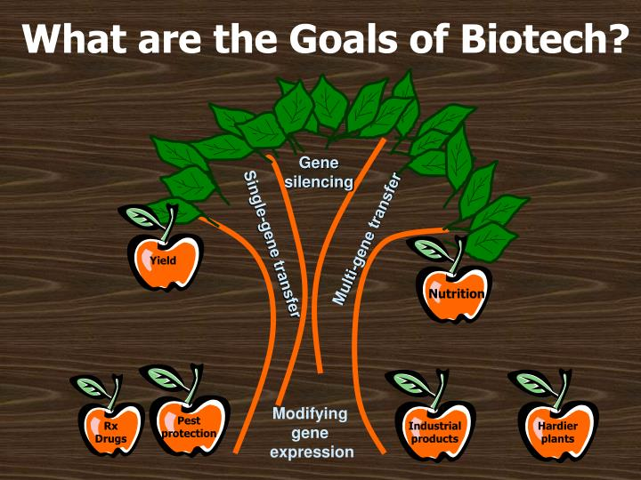biotechnology goal Biotechnology, at jamestown community college in ,   and working effectively on projects by themselves or as a team to reach a common goal.