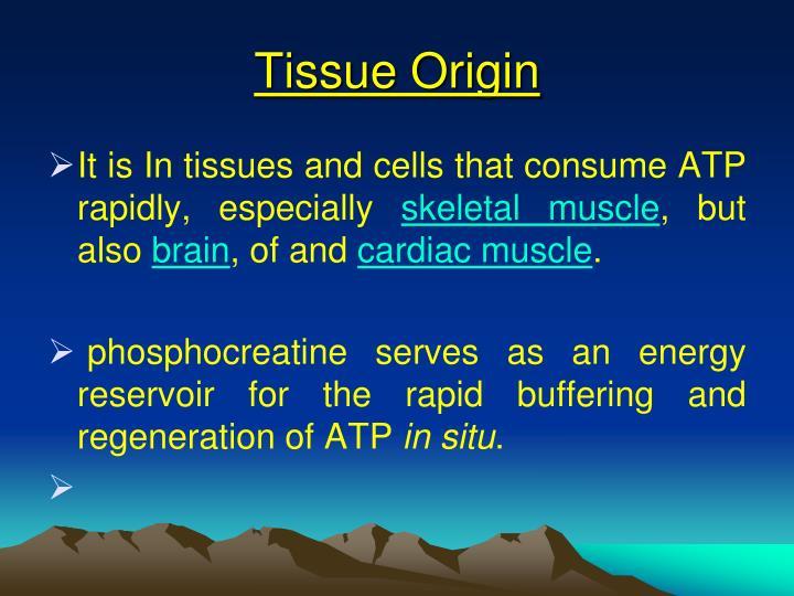Tissue Origin