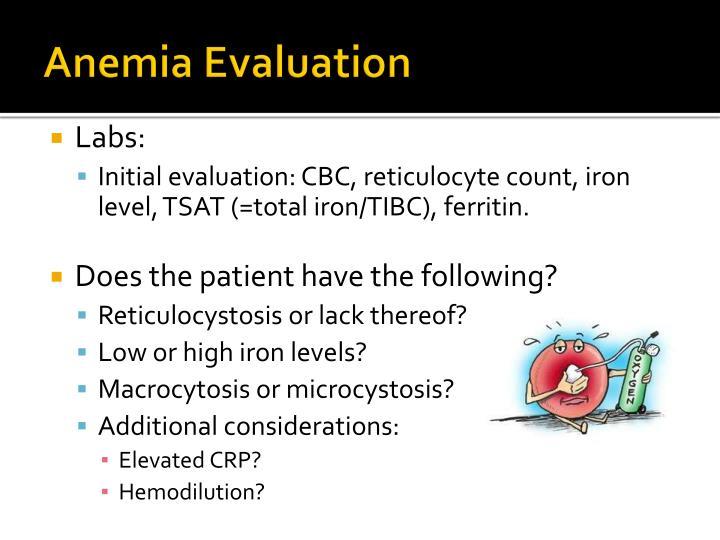 Anemia Evaluation