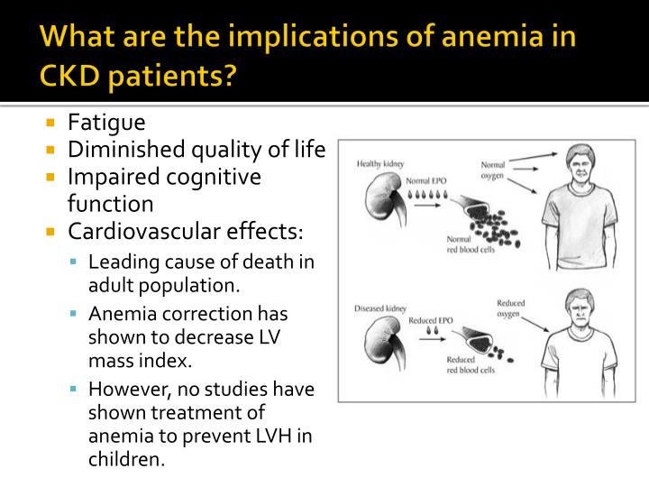 What are the implications of anemia in CKD patients?