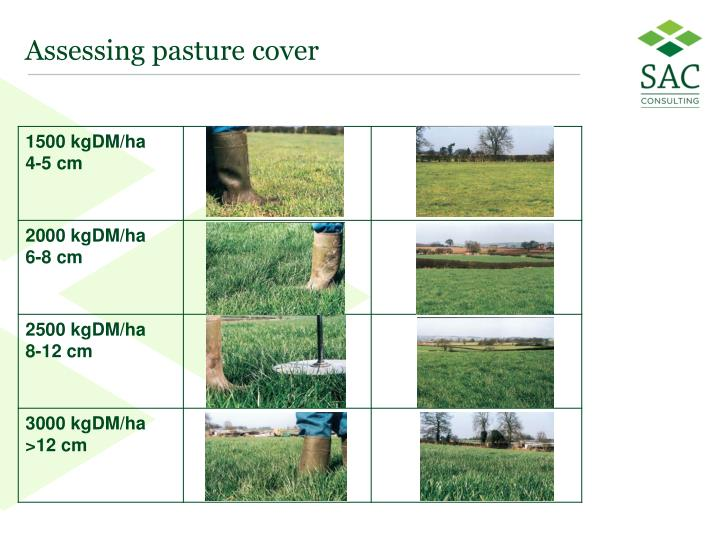 Assessing pasture cover