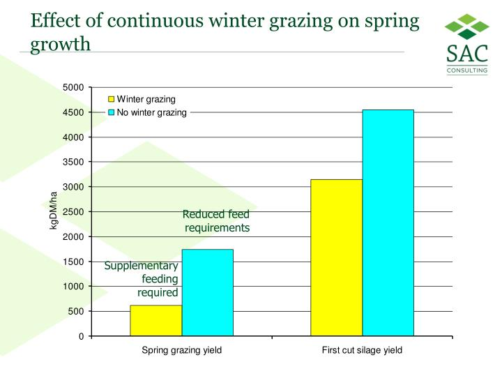 Effect of continuous winter grazing on spring growth