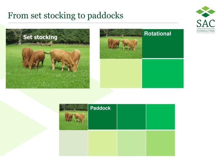 From set stocking to paddocks