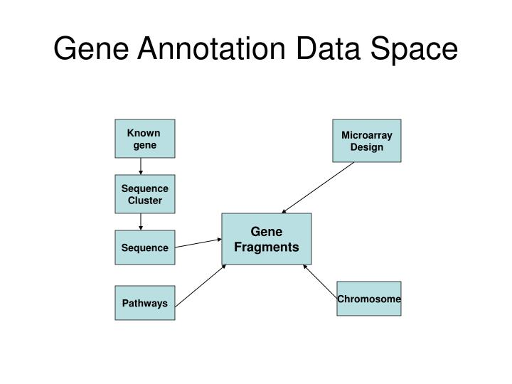 Gene Annotation Data Space