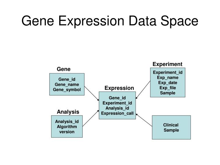 Gene Expression Data Space