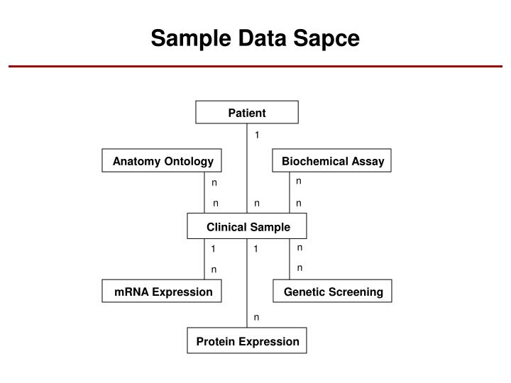 Sample Data Sapce