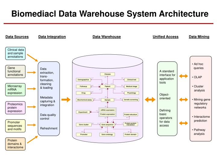 Biomediacl Data Warehouse System Architecture