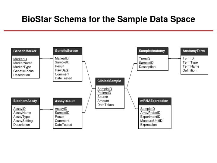 BioStar Schema for the Sample Data Space