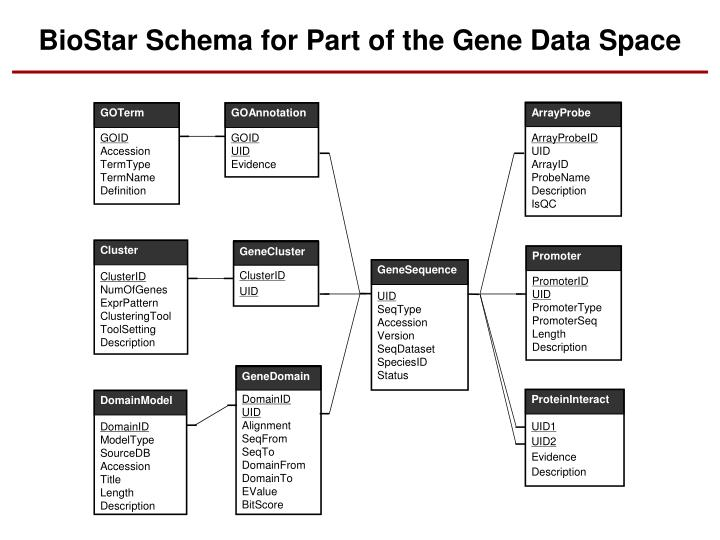 BioStar Schema for Part of the Gene Data Space