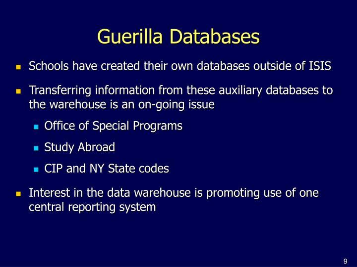 Guerilla Databases