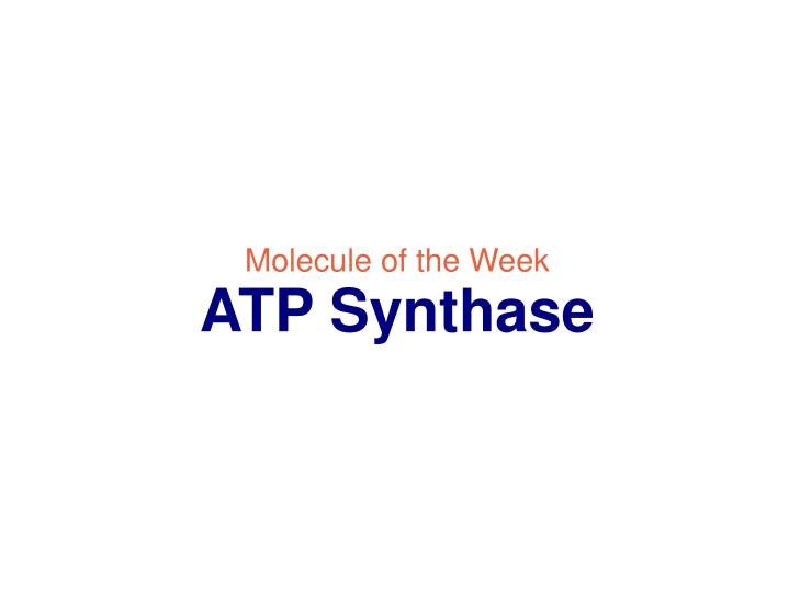 Molecule of the week atp synthase