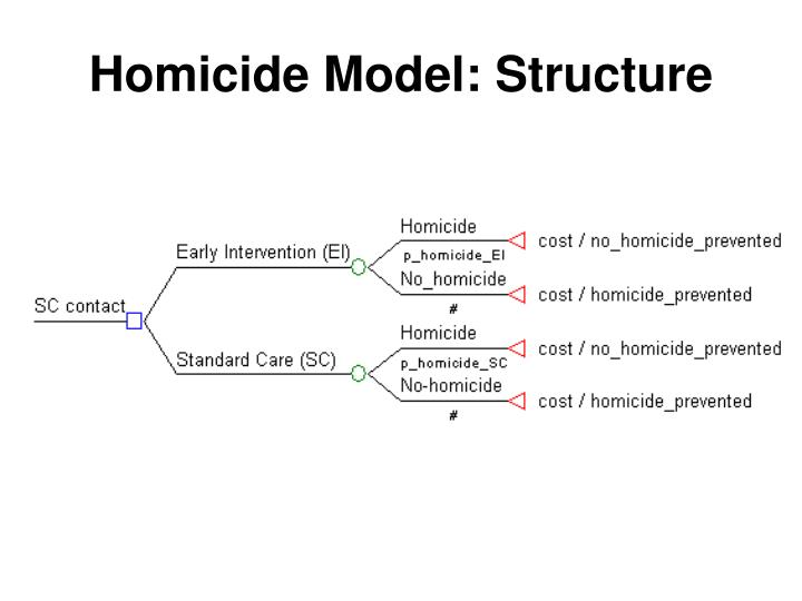 Homicide Model: Structure