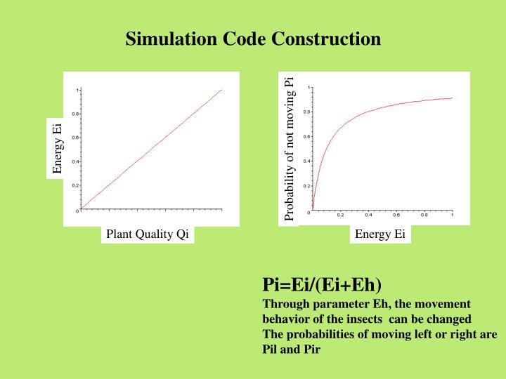 Simulation Code Construction