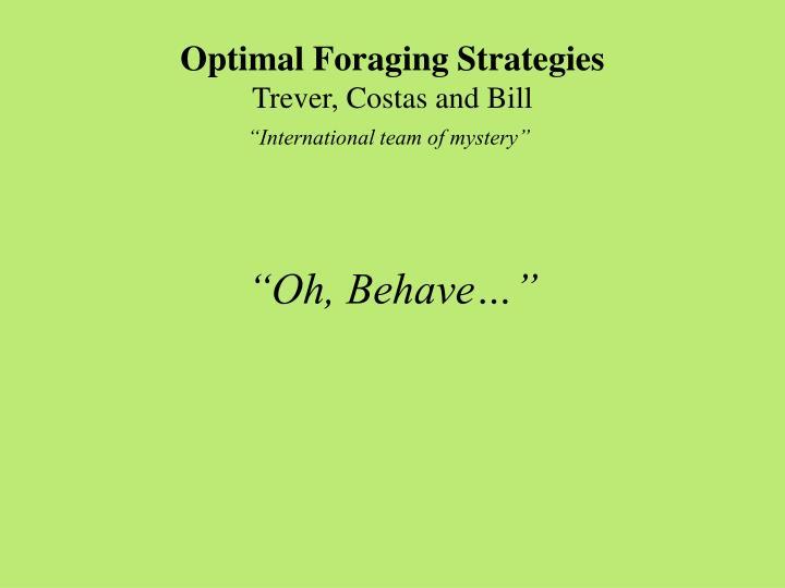 Optimal Foraging Strategies