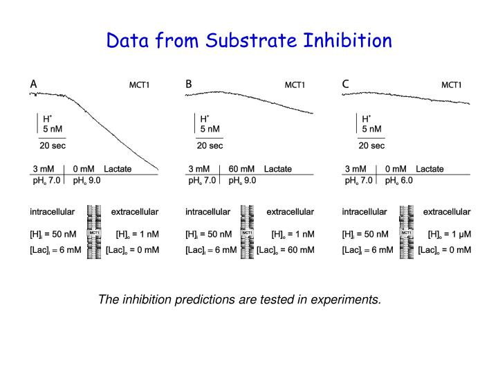 Data from Substrate Inhibition