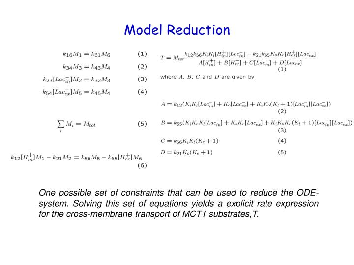 Model Reduction