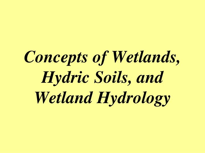Concepts of Wetlands, Hydric Soils, and Wetland Hydrology