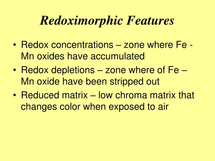 Redoximorphic Features