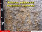 reduction oxidation and translocation saturation