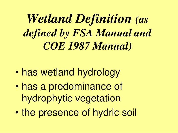 Wetland Definition
