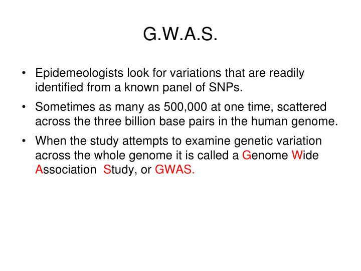 G.W.A.S.