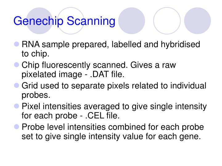Genechip Scanning