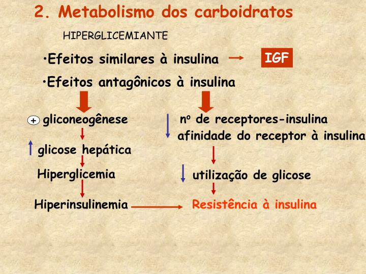 2. Metabolismo dos carboidratos